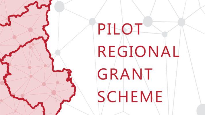 Përzgjedhja e Projekteve për Skemën Pilote të Granteve të PZHRSH-së